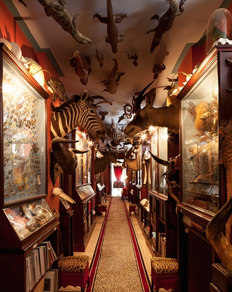 Garcia created a cabinet of curiosities in the manner of grand European country houses.